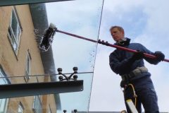 canopy cleaning bristol